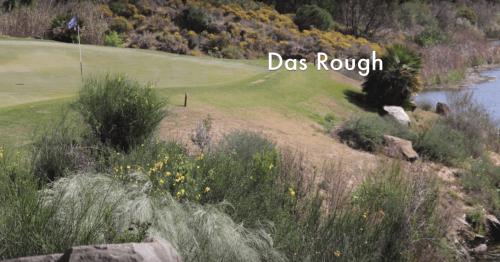 Rough Monte Rei
